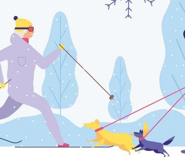 Wintersport auf die sanfte Art