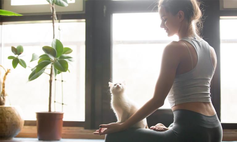 Abwehrkräfte stärken: Meditation für die Gesundheit