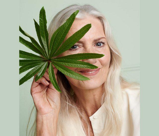 Avon weist Verbindung von CBD mit Anti-Aging in Hautpflege nach