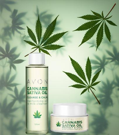 Pflege für normale Haut: Cannabis Sativa Oil Pflegereihe
